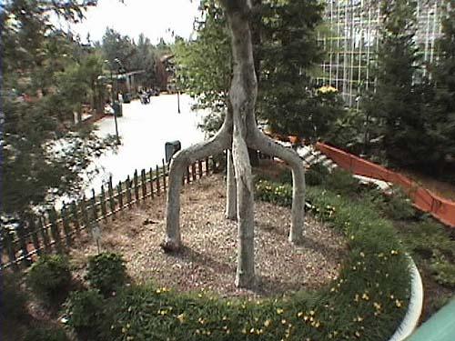 Bonfante Gardens Family Theme Park Gilroy, CA Official Website:  Www.bonfantegardens.com