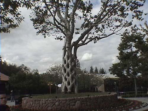 Bonfante Gardens Photos