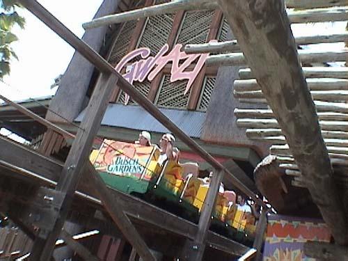 Busch Gardens Tampa Photos