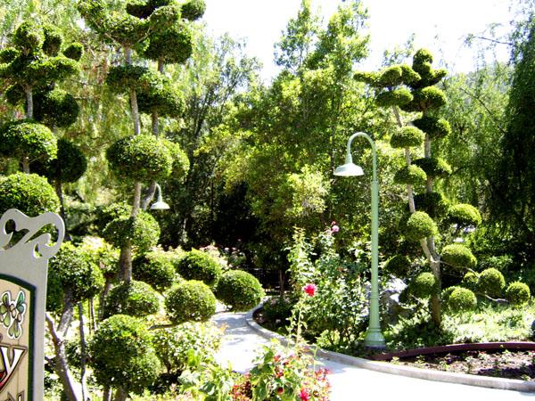 Chapter four gilroy gardens polar opposites for Gilroy garden trees