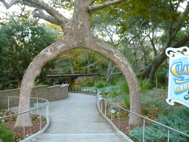 Trip to gilroy gardens theme park review for Gilroy garden trees