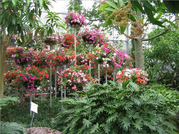 Bonfante Gardens