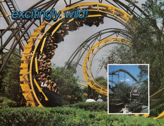 Image Result For Busch Gardens Tampa Fl Pictures