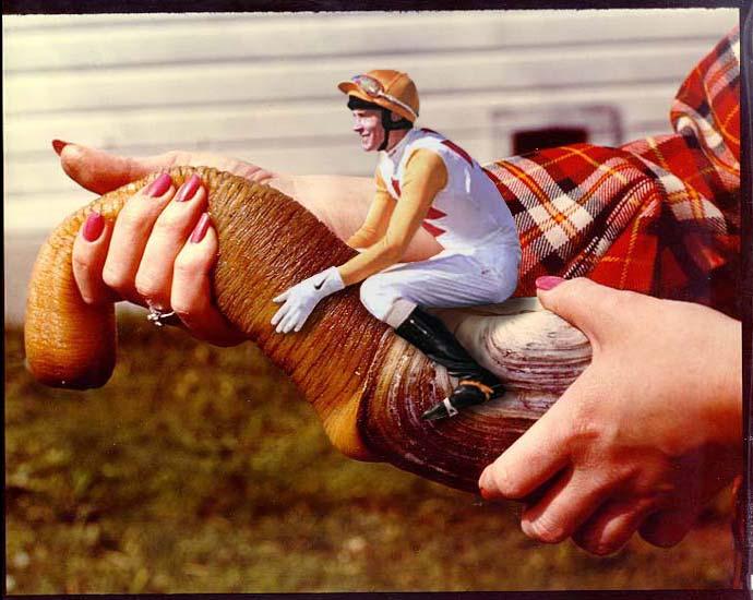 geoduck jockey lrg 987 Sara Jean Underwood naked yoga 1