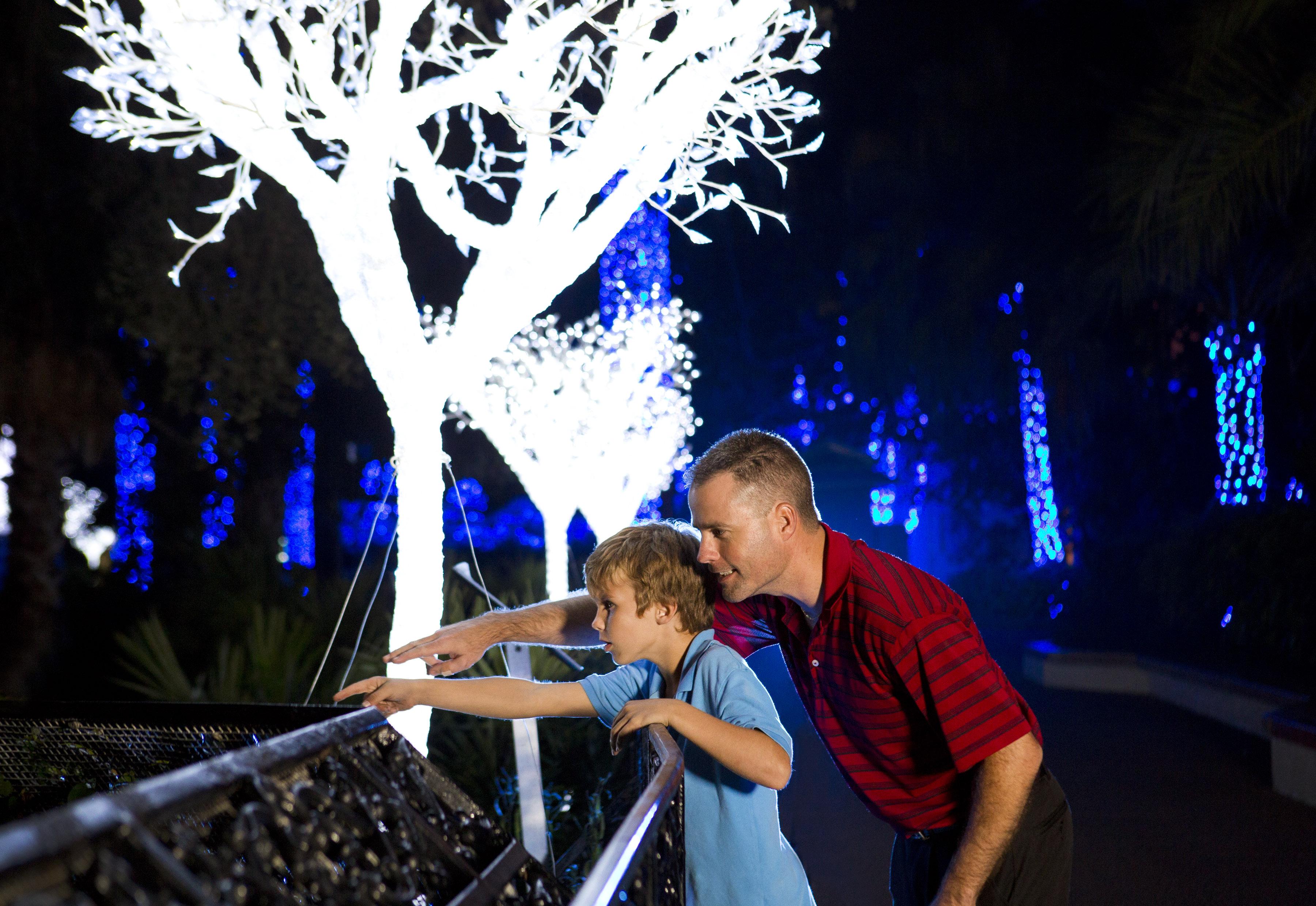 Theme Park Review Busch Gardens Tampa Bay Bgt Bga