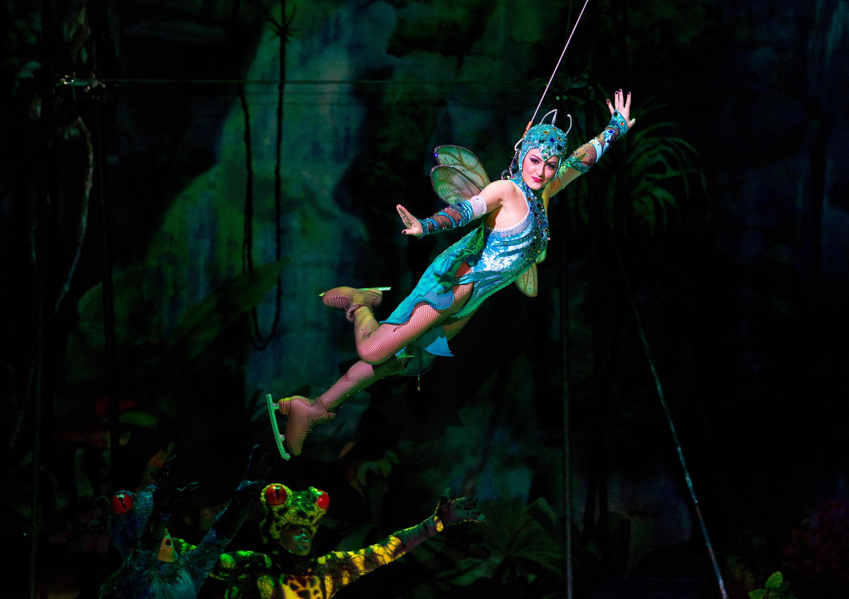 Iceploration Busch Gardens Tampa Bay - Full Show Resort ...