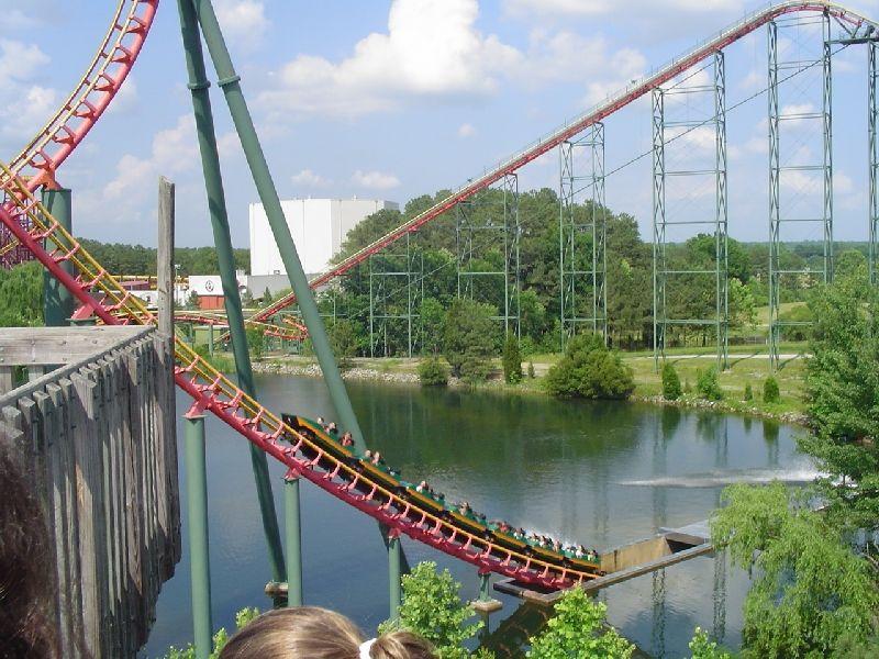 Black anaconda water coaster - photo#23