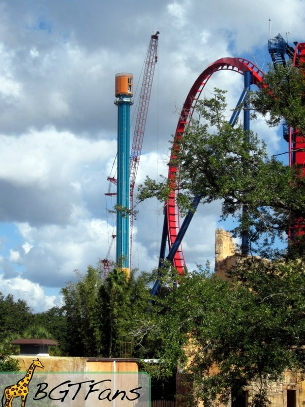 Busch gardens tampa bay bgt bga discussion thread page Busch gardens tampa water park
