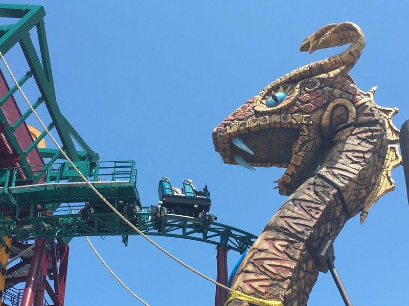 Busch Gardens Tampa Cobra 39 S Curse