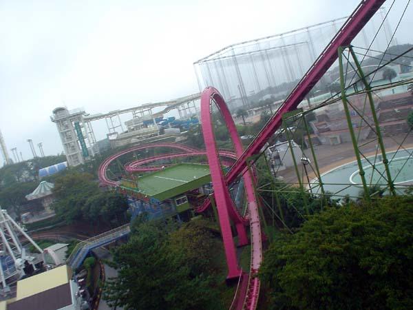 Momonga Standing and Loop Coaster