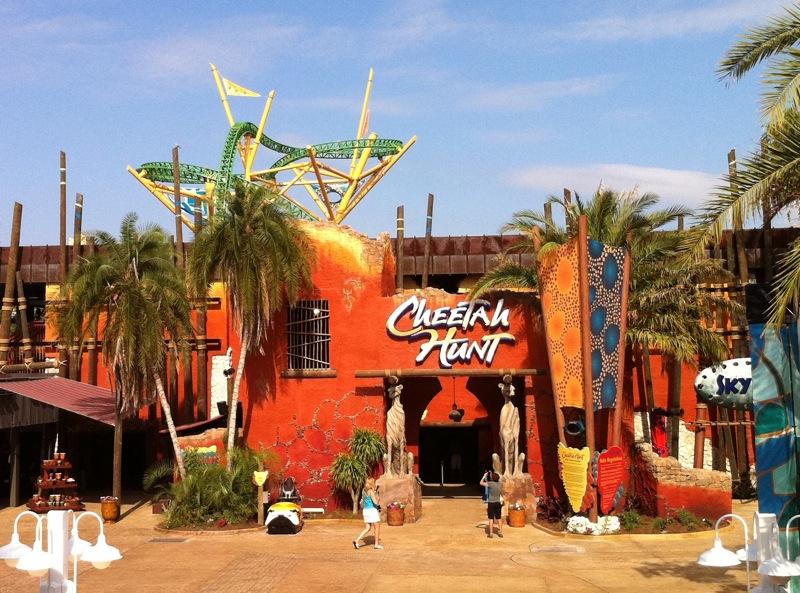 Busch Gardens Tampa   Photos, Videos, Reviews, Information
