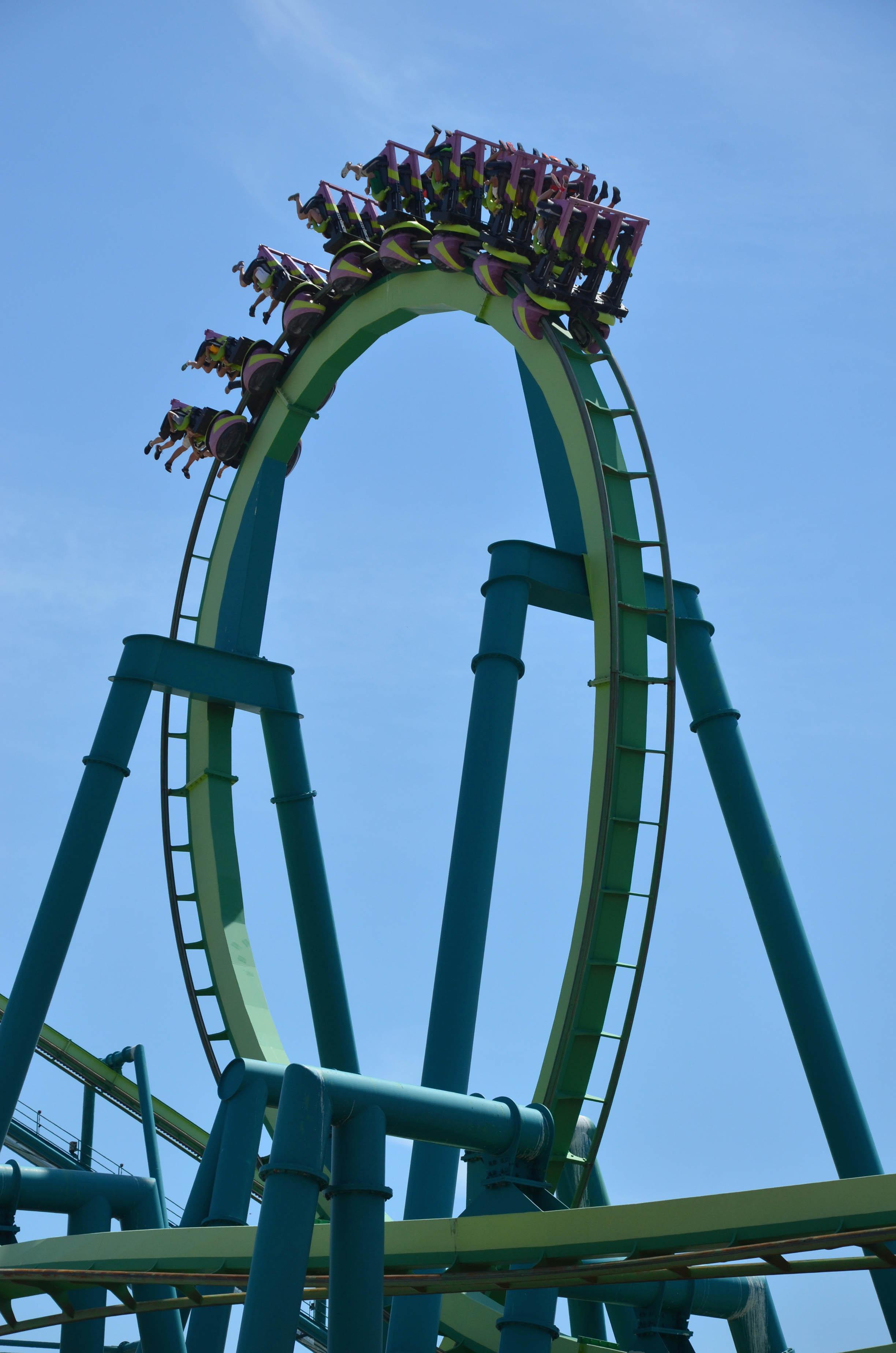 Cedar Point Raptor